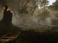 Swamp-Morning